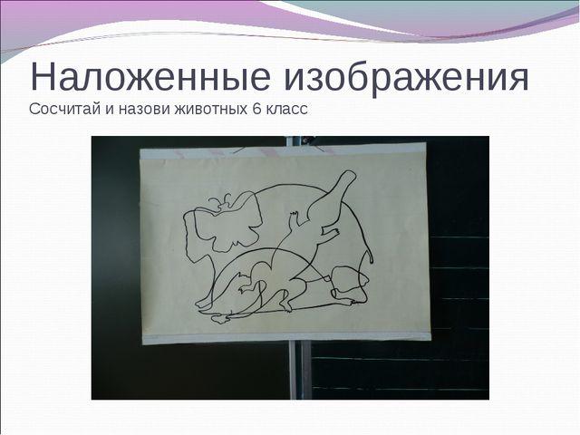 Наложенные изображения Сосчитай и назови животных 6 класс