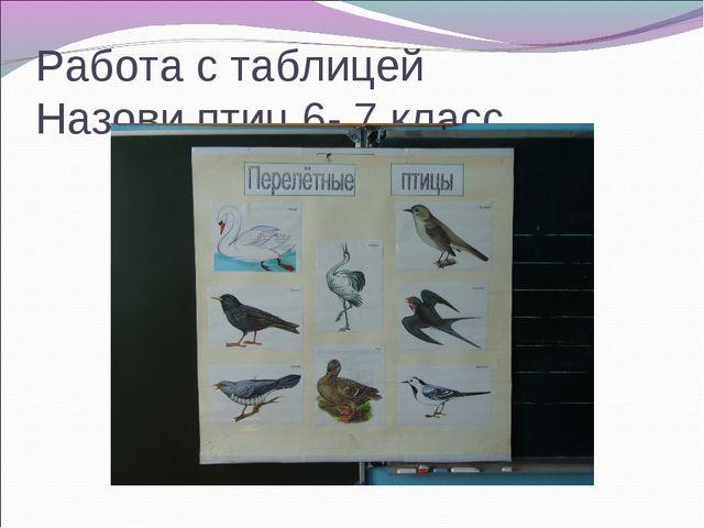 Работа с таблицей Назови птиц 6- 7 класс