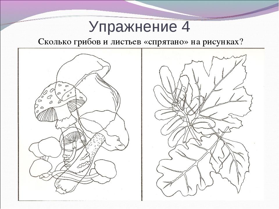 Упражнение 4 Сколько грибов и листьев «спрятано» на рисунках?