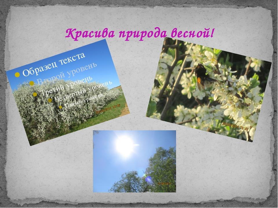 Красива природа весной!