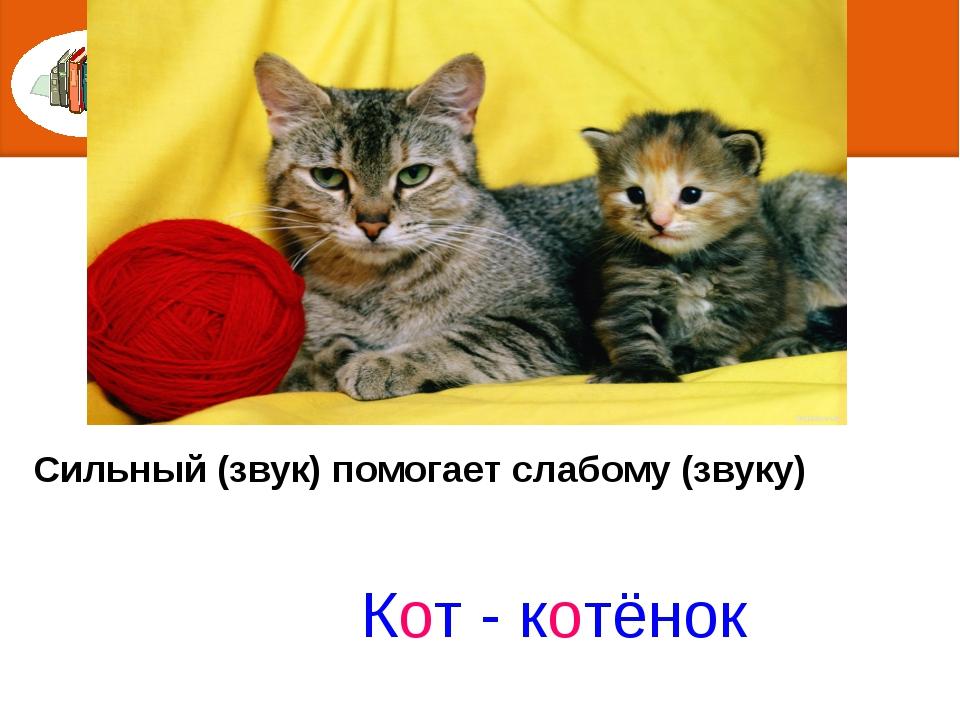 Сильный (звук) помогает слабому (звуку) Кот - котёнок