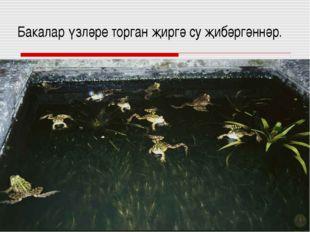 Бакалар үзләре торган җиргә су җибәргәннәр.