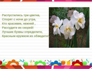 Распустились три цветка, Спорят с ночи до утра, Кто красивее, нежней , Рассуд