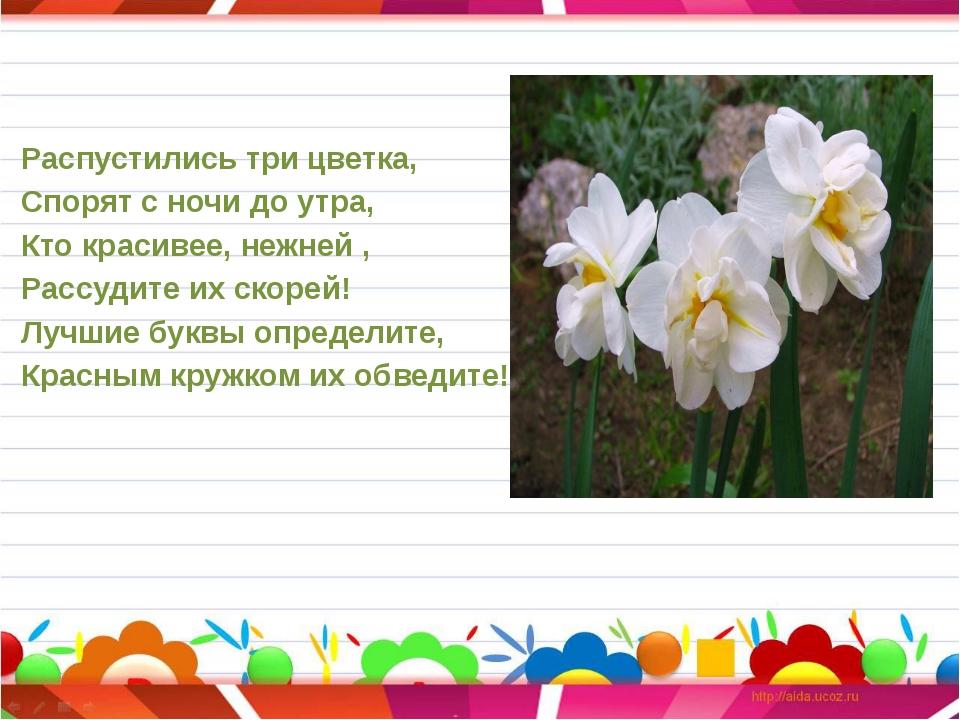 Распустились три цветка, Спорят с ночи до утра, Кто красивее, нежней , Рассуд...