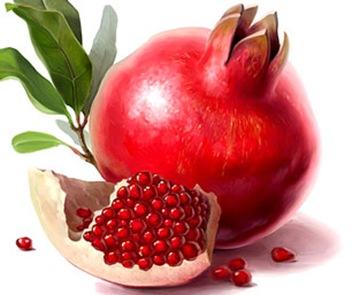 C:\Users\пк\Desktop\картинки для презинтаций\фрукты, овощи\48.jpg