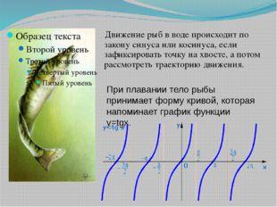 Движение рыб в воде происходит по закону синуса или косинуса, если зафиксиро