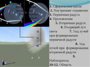 1. Сферическая капля 2. Внутреннее отражение 3. Первичная радуга 4. Преломлен