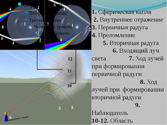 1. Сферическая капля 2. Внутреннее отражение 3. Первичная радуга 4. Преломлен...