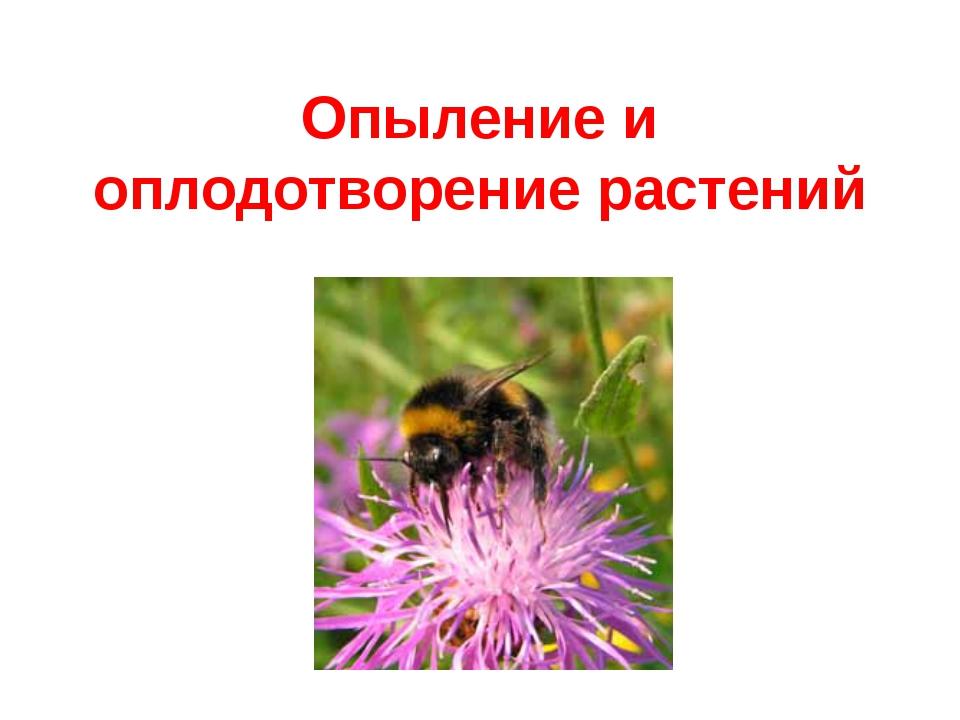 Опыление и оплодотворение растений