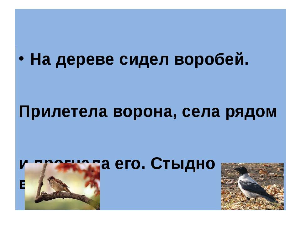 На дереве сидел воробей. Прилетела ворона, села рядом и прогнала его. Стыдно...