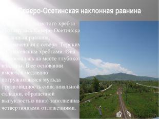 Северо-Осетинская наклонная равнина К северу от лесистого хребта протянулась