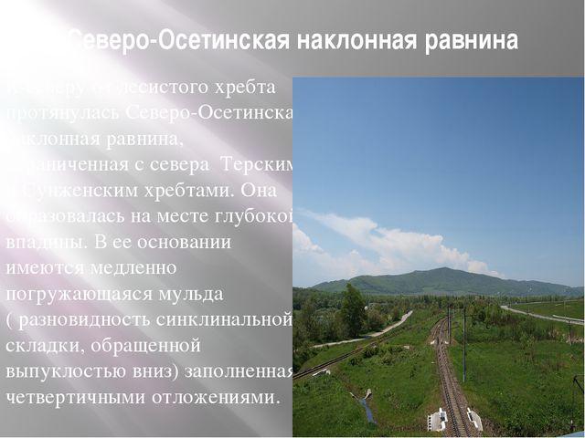 Северо-Осетинская наклонная равнина К северу от лесистого хребта протянулась...