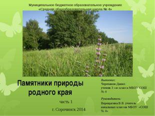 Выполнил: Черепанов Данил ученик 3 «а» класса МБОУ СОШ № 4 Руководитель: Вере