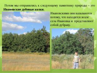 Потом мы отправились к следующему памятнику природы – это Ивановские дубовые