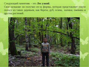Следующий памятник – это Лес узкий. Свое название он получил из-за формы, кот