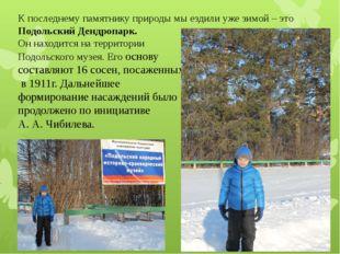 К последнему памятнику природы мы ездили уже зимой – это Подольский Дендропар