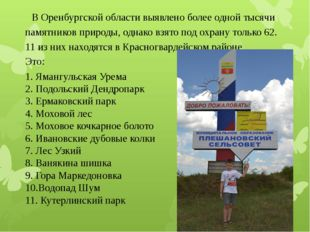 В Оренбургской области выявлено более одной тысячи памятников природы, однак
