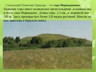 Следующий Памятник Природы – это гора Маркедоновка. Название горы имеет калмы