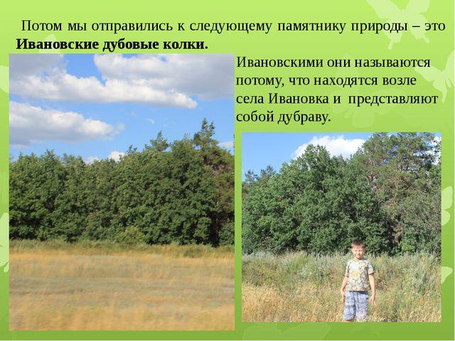 Потом мы отправились к следующему памятнику природы – это Ивановские дубовые...