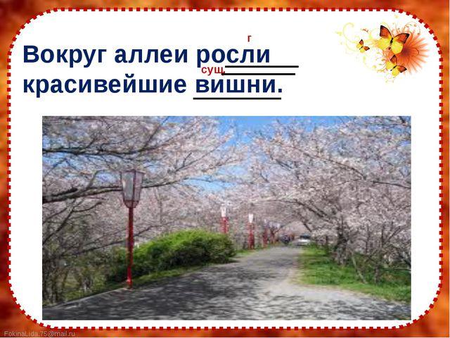 Вокруг аллеи росли красивейшие вишни. сущ. г FokinaLida.75@mail.ru