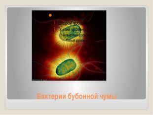 Бактерии бубонной чумы