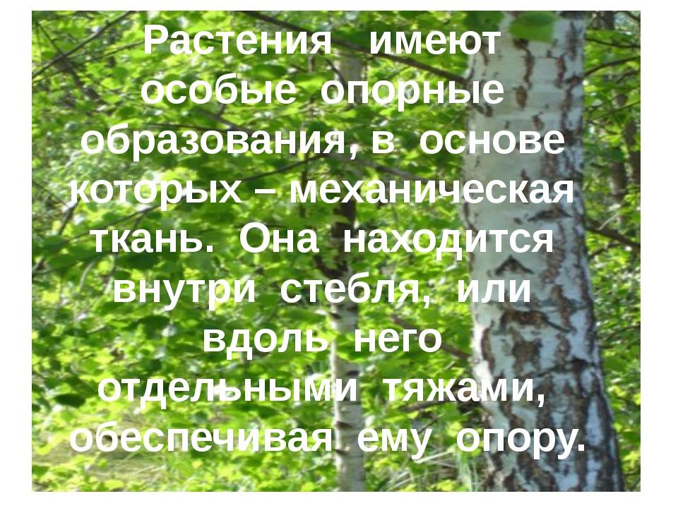 Растения имеют особые опорные образования, в основе которых – механическая тк...