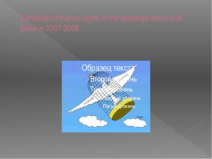 Exhibition of human rights in the drawings which took place in 2007-2008