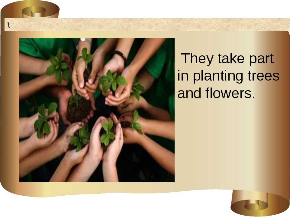 \ They take part in planting trees and flowers.
