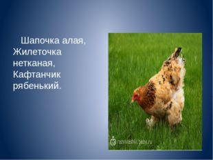 Шапочка алая, Жилеточка нетканая, Кафтанчик рябенький.