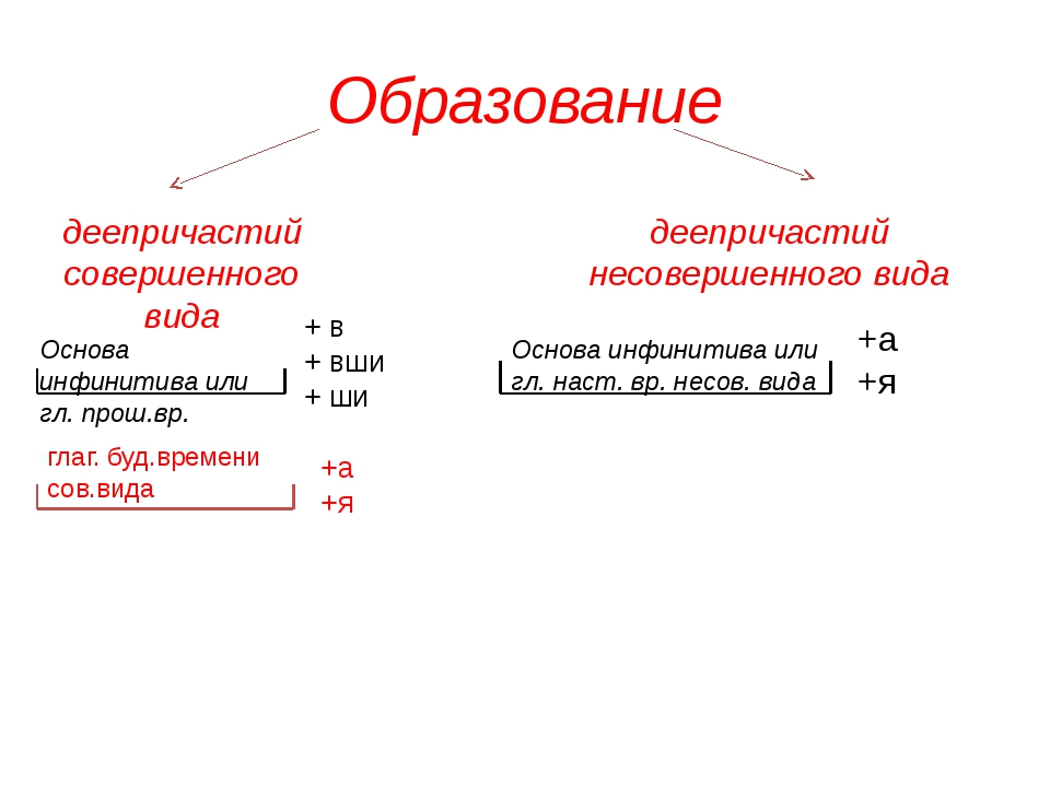 Образование деепричастий совершенного вида Основа инфинитива или гл. прош.вр....