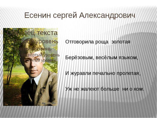 Есенин сергей Александрович Отговорила роща золотая Берёзовым, весёлым языком...