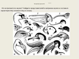 Приложение 6 Инструктивная карточка №2. Кто встречается в музее? Найдите пре