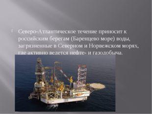 Северо-Атлантическое течение приносит к российским берегам (Баренцево море) в