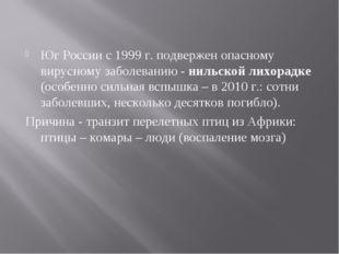 Юг России с 1999 г. подвержен опасному вирусному заболеванию - нильской лихор