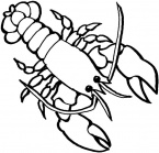 crayfish-coloring-page