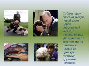 Собаки герои спасают людей, порой даже ценой собственной жизни, в очередной р