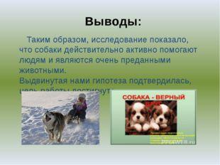 Выводы: Таким образом, исследование показало, что собаки действительно активн
