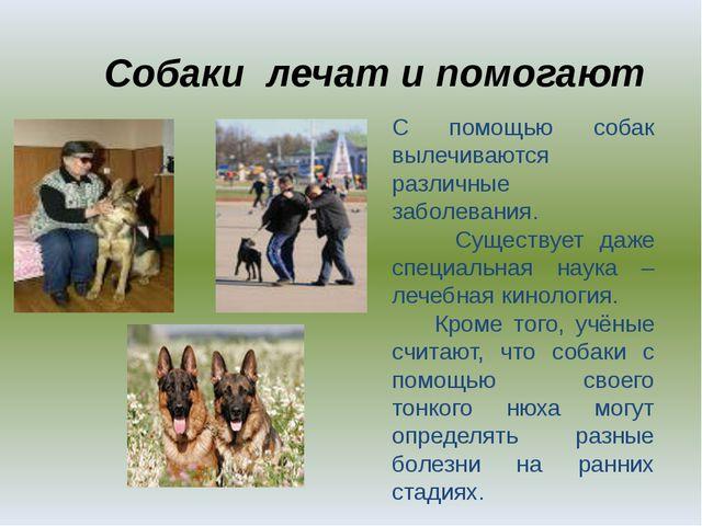 Собаки лечат и помогают . С помощью собак вылечиваются различные заболевания....