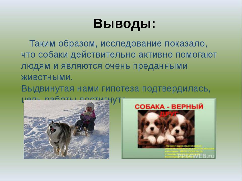 Выводы: Таким образом, исследование показало, что собаки действительно активн...