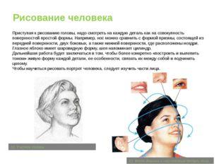 Рисование человека Приступая к рисованию головы, надо смотреть на каждую дета