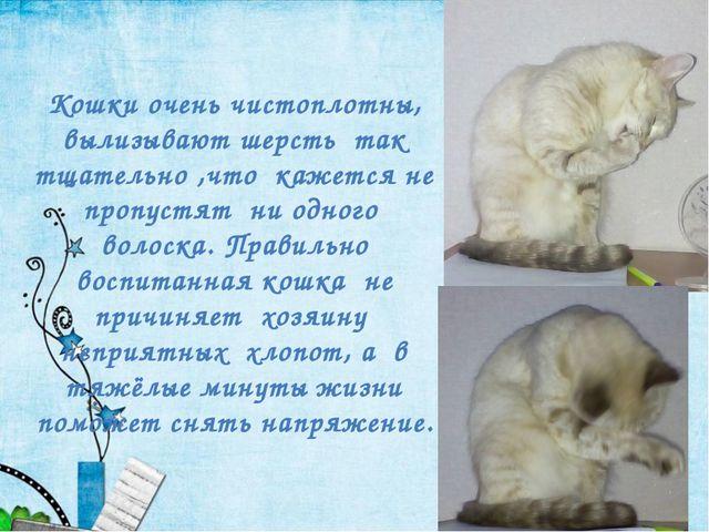 Кошки очень чистоплотны, вылизывают шерсть так тщательно ,что кажется не проп...