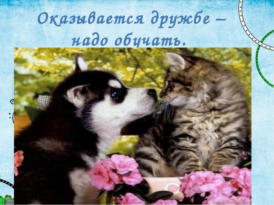 Оказывается дружбе – надо обучать.