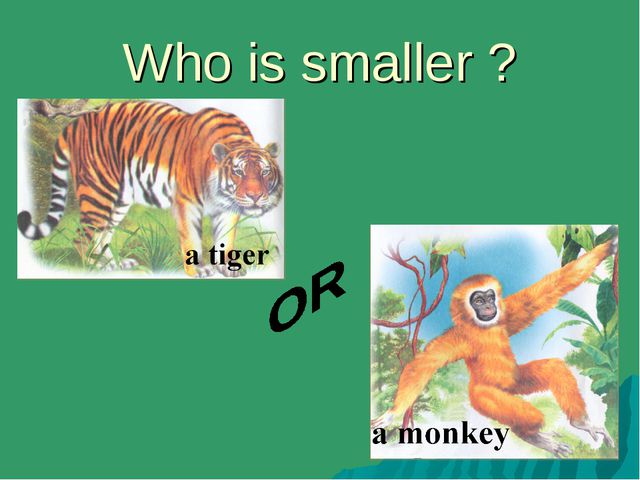 Who is smaller ?