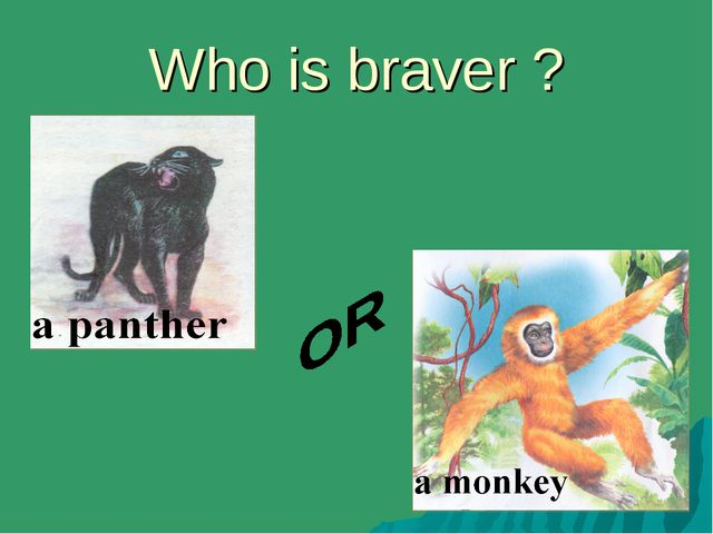 Who is braver ?