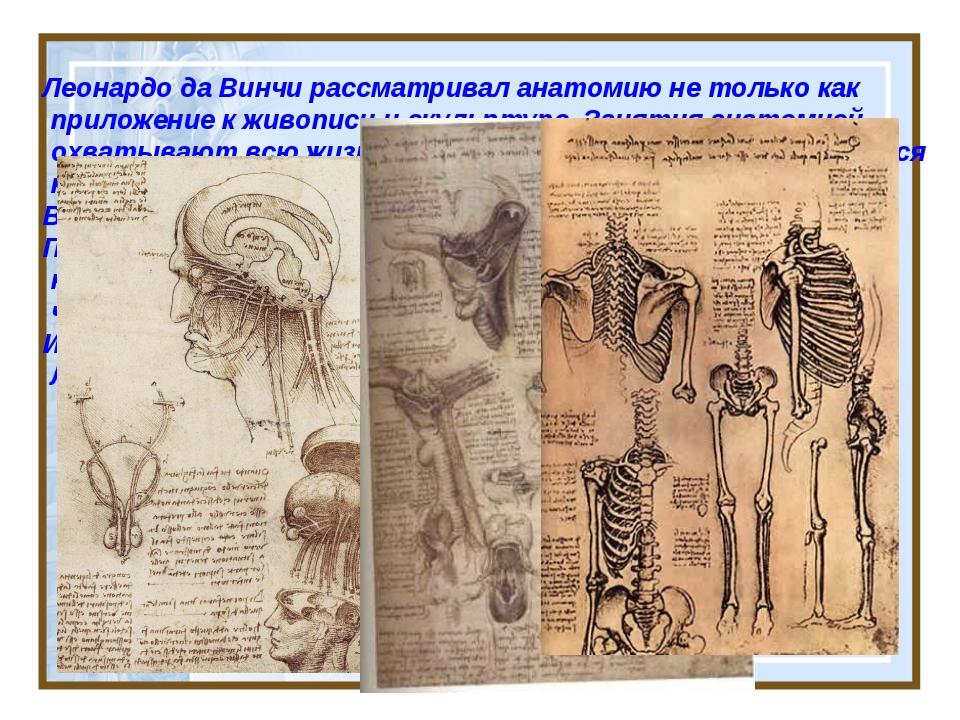 Леонардо да Винчи рассматривал анатомию не только как приложение к живописи...