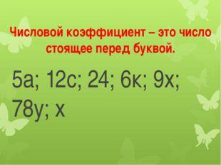 Числовой коэффициент – это число стоящее перед буквой. 5а; 12с; 24; 6к; 9х; 7