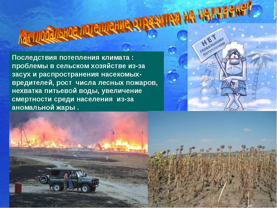 Последствия потепления климата : проблемы в сельском хозяйстве из-за засух и...