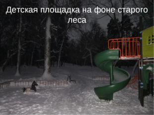 Детская площадка на фоне старого леса
