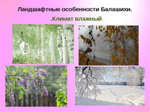 Ландшафтные особенности Балашихи. Климат влажный.