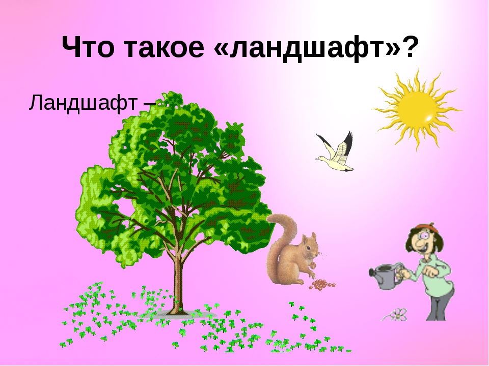Что такое «ландшафт»? Ландшафт –